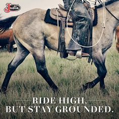 Ride high, but stay grounded.