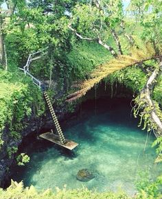New Zealand- okay Im just moving here, realizing my childhood dream! Maybe I need money.