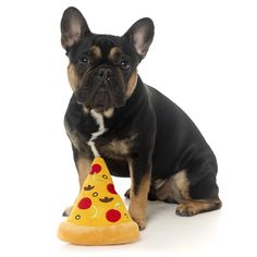 These FuzzYard plush dog toys are foodie fun. This adorable pizza slice dog toy has all the toppings and a squeaker too. Donut Pictures, Dog Phone, Toy Basket, Dog Friends, Dog Toys, French Bulldog, Stuffed Mushrooms, Pizza, Plush