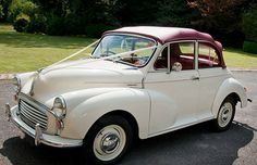 Morris Minor (affectionatly known as a moggyminor)