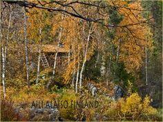 Wilderness cottage in Taivalköngäs, Kuusamo Finland  Photo Aili Alaiso Finland