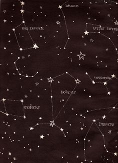 constellations Jason knows most of these...sadly I never can remember but it's so cool!