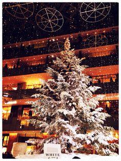 christmas tree in kitte Tokyo