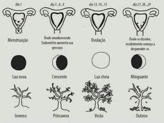 "Pachamama ""Ciclos do Sagrado Feminino"". Love your uterus. Wiccan, Witchcraft, Éphémères Vintage, Moon Time, Sacred Feminine, Moon Magic, Wise Women, Menstrual Cycle, New Moon"