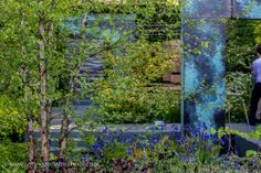 Brewin Dolphin #Garden, #Chelsea Flower Show 2014, Mathew Childs