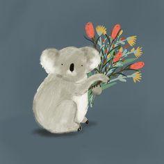 Koala by Jess Racklyeft