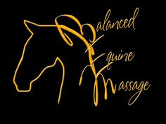Equine Massage Therapy...such a great thing. =)