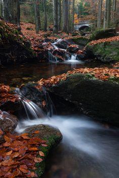 Czech Republic - Šumava National Park - Bílý potok Planet Earth Ii, Beautiful Places, Beautiful Pictures, End Of The World, Natural Wonders, Czech Republic, Nature Photos, Water Features, Beautiful Landscapes
