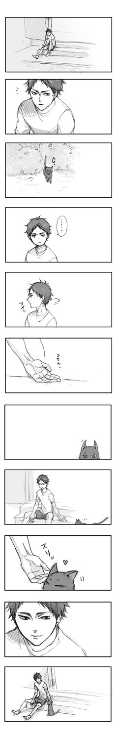 Head cannon that Akaashi likes to play with cats ( ̄3 ̄)