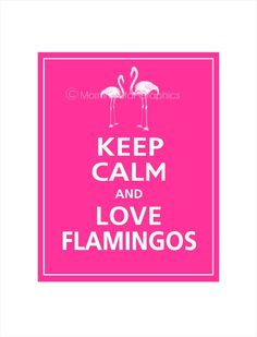 SO true flamingos are lovible <3
