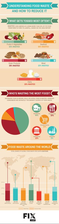 Understanding Food Waste In One Easy To Read Infographic