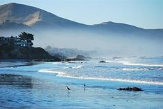 Cayucos coast