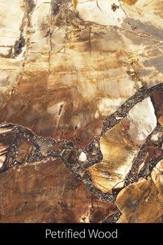 Das ideale Plattenmaterial für denjenigen, der das Besondere und Exklusive sucht. Petrified Wood besteht aus verbundenen Bruchstücken von versteinertem Holz, weshalb jede Tischplatte ein unverwechselbares Unikat mit einer ganz besonderen Geschichte darstellt. Ein wunderbares Plattenmaterial für beispielsweise einen ausgefallenen Salontisch Terrazzo, Petrified Wood, Painting, Design, Art, Natural Stones, Addiction, History, Art Background