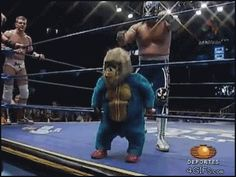 WHO SEZ WWF WRESTLING IS FAKE? IT'S FUNNY! - DWARF IN TINY BLUE GORILLA COSTUME GETS BOPPED THEN KICK OUT OF RING! - GOOFY ACTION GIF!