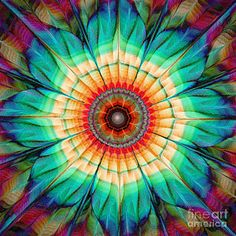 Fractal Digital Art - Flower Mandala by Klara Acel