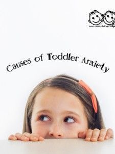 Do you wonder what causes your toddler's anxiety? Read and find out.