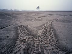 Lanschap Veenkoloniën. Deze najaars opname in de Veenkoloniën geeft een beeld van een perceel dat ontsmet is in verband met aardappelziekten. De boom en de trekkersporen zorgen voor een dynamisch beeld.  Hans Sas