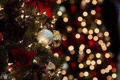 beautiful, christmas, christmas tree, lights, new year Christmas Scenes, Christmas Mood, Merry Little Christmas, Noel Christmas, Christmas Photos, Christmas Lights, Christmas Decorations, Christmas Ornaments, Christmas Background