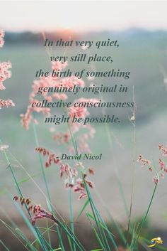"""In that very quiet, very still place, the birth of something genuinely original in collective consciousness might be possible."" -David Nicol  http://theshiftnetwork.com/?utm_source=pinterest&utm_medium=social&utm_campaign=quote"
