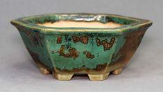 Tokoname Bonsai Pot #A1730 by Jukoh (Kohyoh)