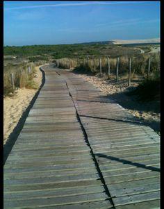 walking through the beautiful dunes in cap ferret