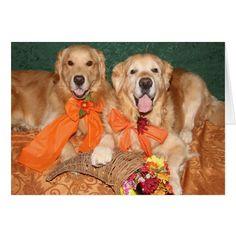 Golden Retriever Cornucopia Thanksgiving Card