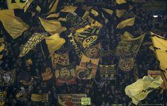 Borussia Dortmund vs Napoli // Yellow Wall