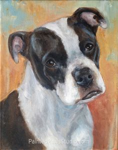 """Keyani aka Kiki"" the Boxer/Pit Bull Mix by Lillian Aguinaga of Painted Paws Studio 