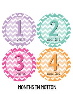 Baby Girl Monthly Baby Stickers Style #280