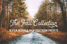 Fall Collection 10 Adobe Lightroom Film Inspired by SabTinDesigns