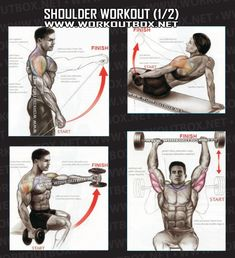 Shoulder Workout Part 1 - Healthy Fitness Exercises Gym Back - Yeah We Train ! - Workouts, Exercises & More