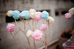 """This has to be the most genius dessert display I've ever seen - cotton candy on tree branches. Looks just like cotton bolls which are quite popular in rustic wedding bouquets."""