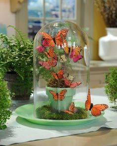 Under glass: Celebrate spring with this terrarium-style display featuring pretty winged critters, as seen on The Martha Stewart Show. It makes a fun alternative to a traditional seasonal floral arrangement. Butterfly Party, Butterfly Birthday, Butterfly Crafts, Butterfly Wedding, Butterfly Cutout, Wedding Flowers, Butterfly Centerpieces, Butterfly Decorations, Cloche Decor