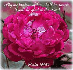 PSALM  1O4:34 -  My meditation of Him shall be sweet:  I will be glad in the Lord!