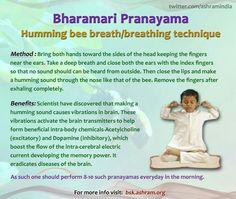 Brahmari... Yoga Breathing Techniques, Deep Breathing Exercises, Meditation Techniques, Pranayama Benefits, Yoga Benefits, Health Benefits, Breathing Meditation, Mindfulness Meditation, Shiva Meditation