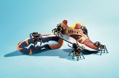 In this impressive editorial for Sneakers Magazine, UK photographer Joseph Ford captured spiders, snakes, scorpions and even a crocodile attacking a Lacoste sneaker at Lacoste Sneakers, Sneakers Nike, Still Photography, Fashion Photography, Animal Photography, Crocodile, Joseph, Ford, Textiles