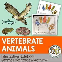 An interactive notebook activity for the five vertebrate animal groups: mammals, birds, reptiles, amphibians, and fish.