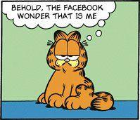 Facebook Wonder!