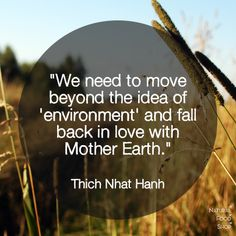 #quotes #nature #environment #MotherEarth #ThichNhatHanh