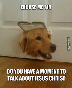 Made me laugh...