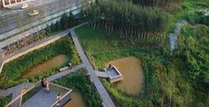 ASLA 2012 Professional Awards | A Green Sponge for a Water-Resilient City: Qunli Stormwater Park - Reminds me of my site