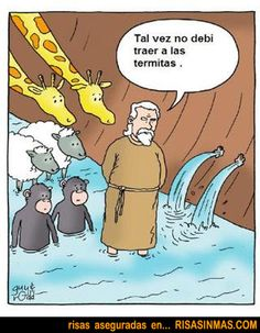 Termitas en el arca de Noé | Risa Sin Más #humor #chistes