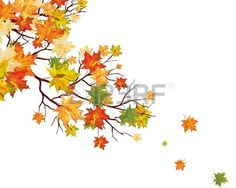 fall leaves stock for invites