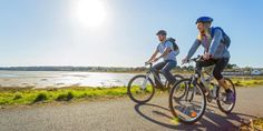 Best Family Cycling Routes In Snowdonia - Holiday Cottages North Wales Snowdonia National Park, Cycle Ride, Forest Road, Anglesey, Beautiful Forest, Young Ones, North Wales, The Visitors, Back In The Day