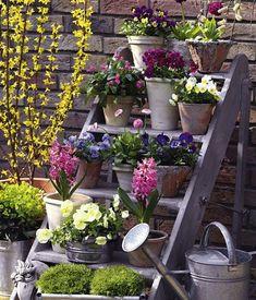 Creare un giardino sul balcone   Matrimonio a Bologna Blog