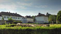 Forêt de Sénart dans l'Essonne - Faisanderie et tronc