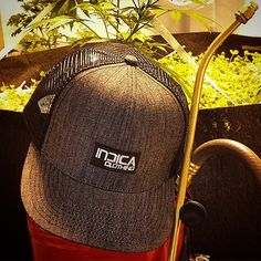 """Instagram media by indica_clothing - #indicaclothing black denim #snapback.!! Maybe the grass is greener on other side.?? Only one way to find out .!! Walk Your Own Path """"Reveal You To Yourself """" #love #life #colorado #cali #dope #dank #fashion #marijuana #mmj #apparel #hightimes #weedstagram #livingsoil #teamnotill"""