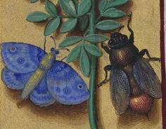 Grandes Heures d'Anne de Bretagne 1684 92v