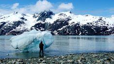 Glacier Bay National Park and Preserve - what a stunning landscape!