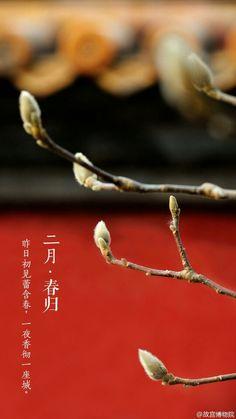 故宫 二月春归 中国风 图源微博 @ 故宫博物院